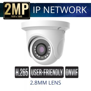 2.8mm 2mp Economy IP Dome Camera Weatherproof with IR